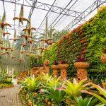 nong nooch pattaya garden