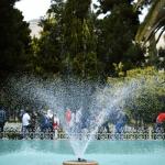 باغ ارم شیراز